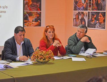 Concejo Municipal ejecuta reunión de trabajo junto a seremi de energía